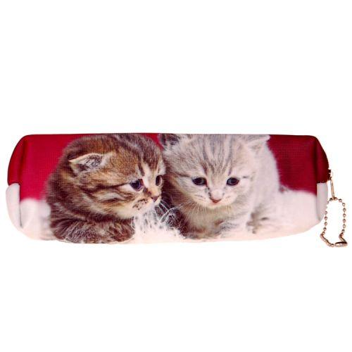 Etui kittens