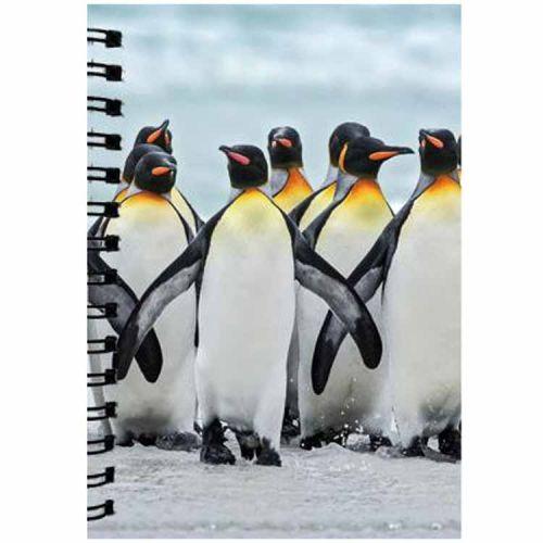 Notitieboekje 3d Pinguin blanco
