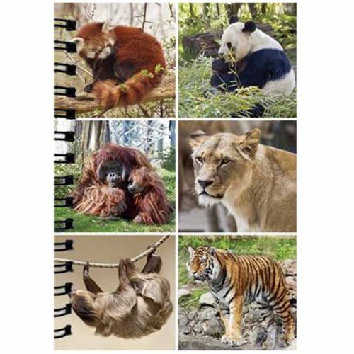 Notitieboekje 3d Wilde dieren blanco