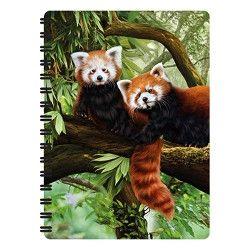 Notitieboekje 3d Rode Panda's