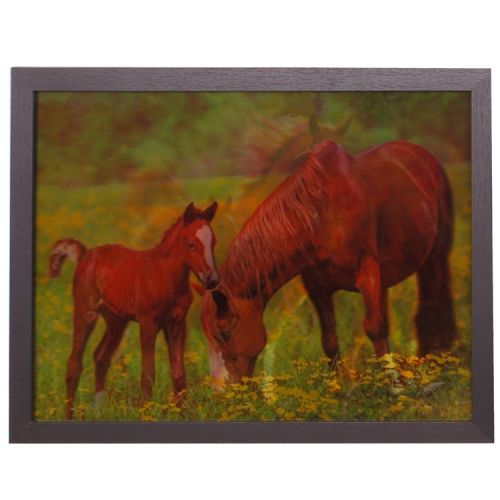 3-d schilderij vos paard met veulen