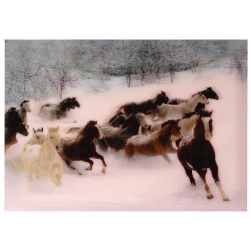 3-d poster paarden sneeuw