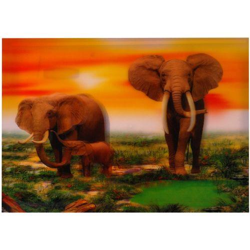 3-d poster olifanten