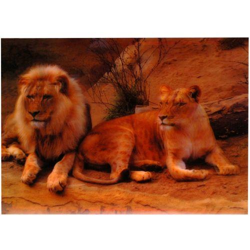 3-d poster leeuwen