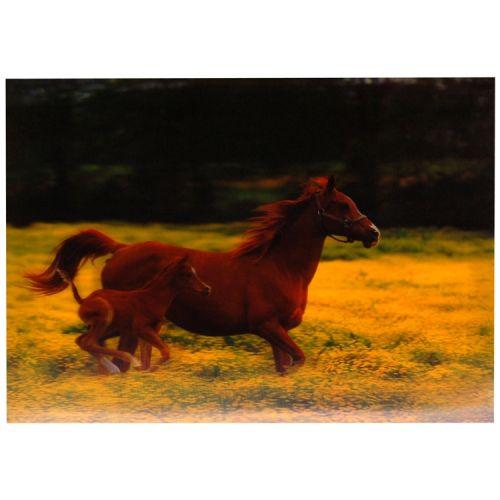 3-d poster paarden