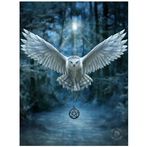 3d poster - Anne Stokes - Uil - Awake the Magic